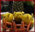 Fruit Piggies